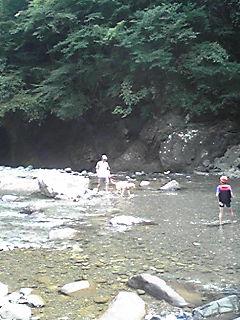 またまた川に来ています