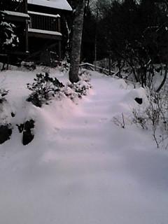 お山は雪景色